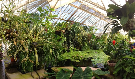 conservatory_pano_1