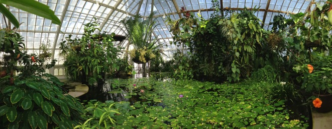 conservatory_pano_2