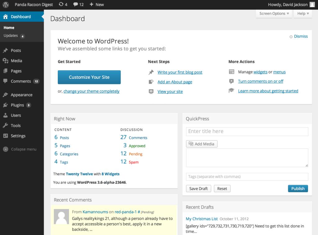 Dashboard ‹ Panda Racoon Digest — WordPress